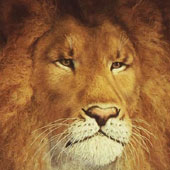 Lion Head, by Anne Andersson